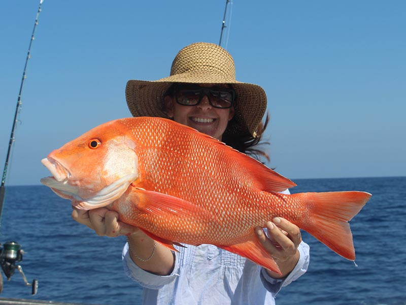 Reef Fishing Day Trips