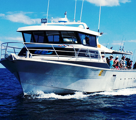 private boat charters broome