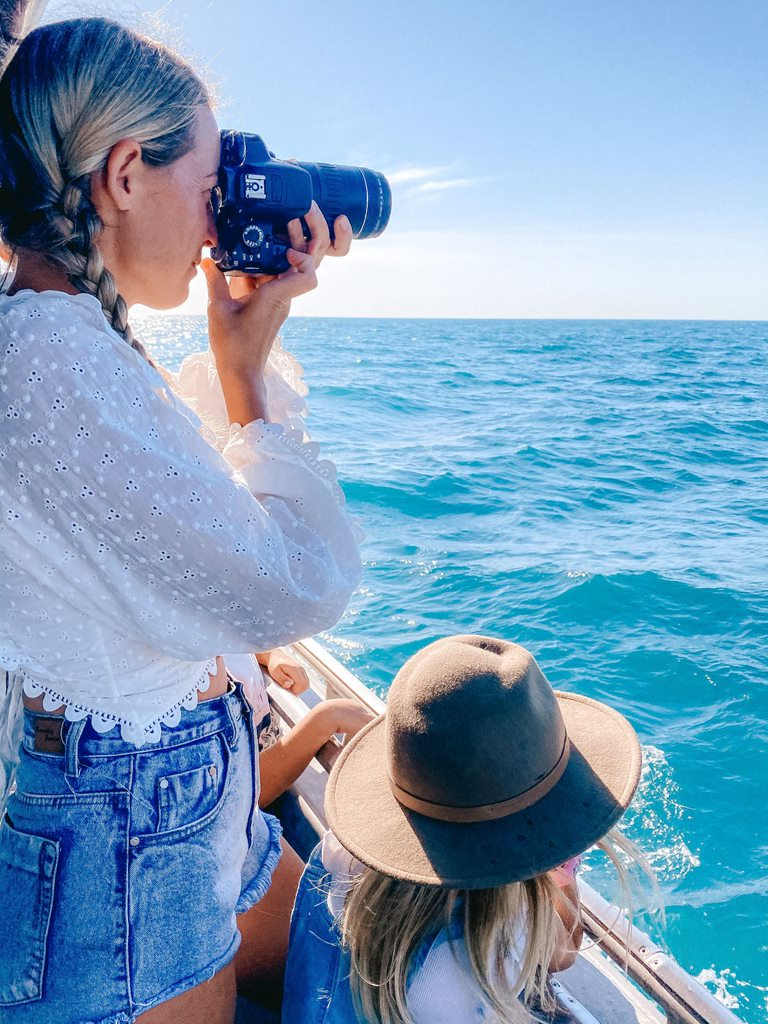Whale Watching Cruises
