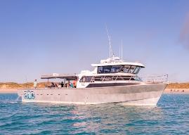 Absolute Ocean Charters - Boat